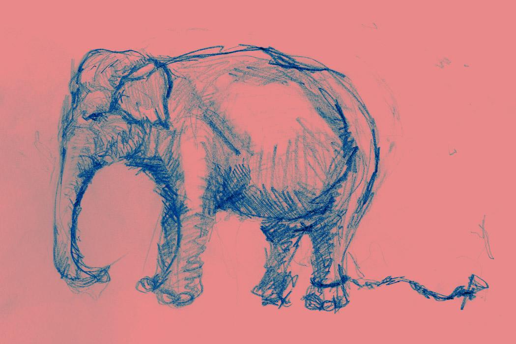 El elefante encadenado guatemala secular for El elefante encadenado